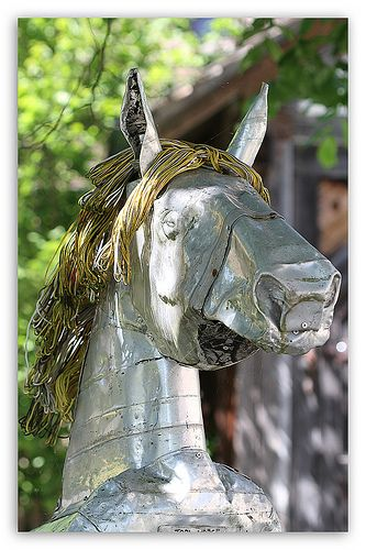 Alpo Koivumäki - Topi - Horse | Flickr - Photo Sharing!