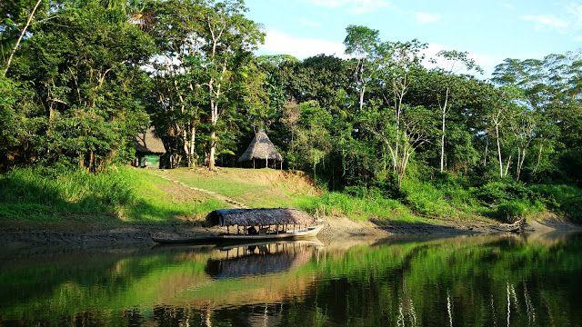 Ivy Mara Ey, Pakaya Samiria, Amazonas, Perú.