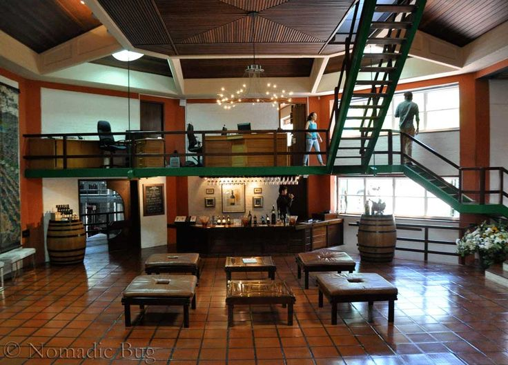 Klein Constantia WINE FARM, Constantia, Cape Town, south Africa Fun Things To Do In Cape Town This Summer Nomadic Existence