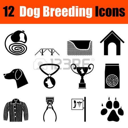 Conjunto de doce iconos de la cría de perros negros. Ilustración del vector. Foto de archivo - 55002594
