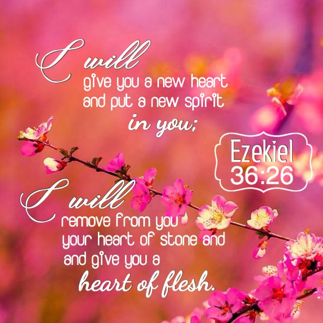 55 best Ezekiel images on Pinterest | Bible scriptures, Scriptures ...