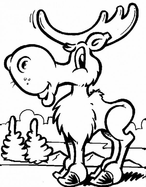 cute moose coloring pages