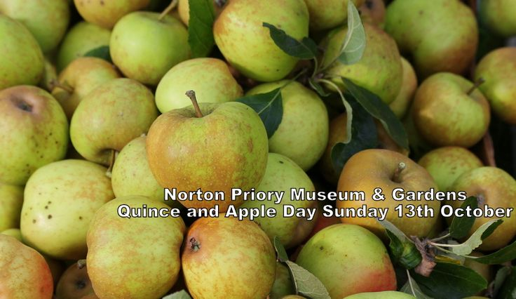 Quince & Apple Day Sunday 13 October 11am - 4pm 2013 Celebrate Autumn in the Walled Garden at this popular event.