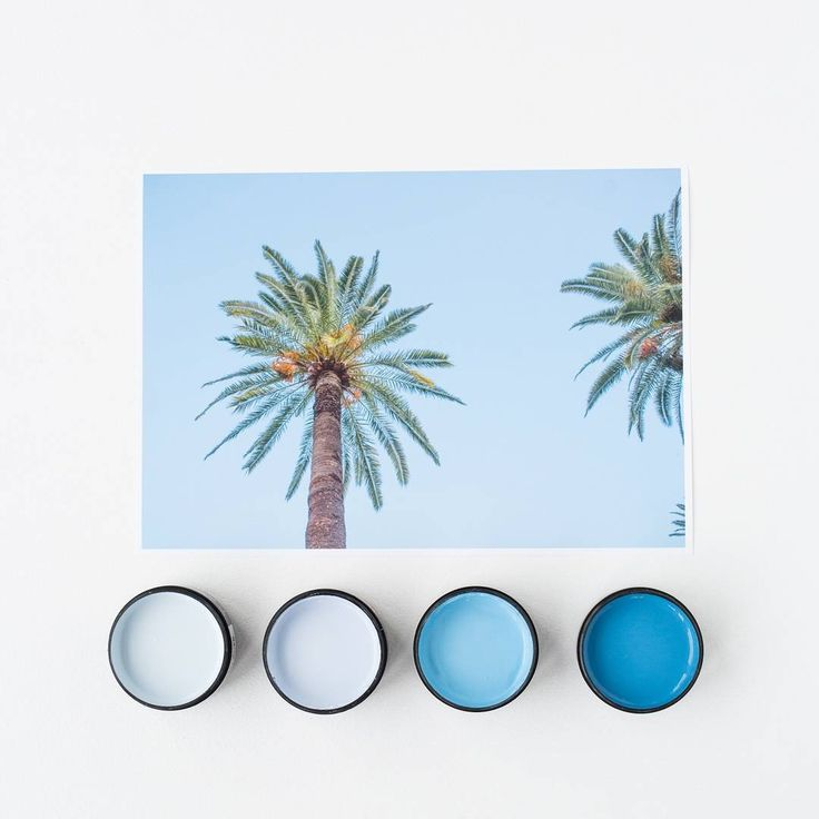 Setting the summer vibe with Palms In Nice art print by @amberarmitage_ Testpots from left in Resene Comfort Zone, Resene Relax, Resene Subzero and Resene Matisse. Available at @endemicworld #Resene #Resenepaints #holidayvibes #artprints #colourpalette #summer #flatlay #amberarmitage