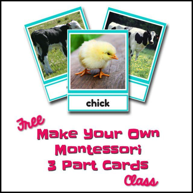 Montessori Monday - Free Make Your Own Montessori 3-Part Cards