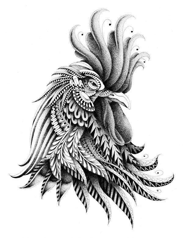 Gallo. Ilustración de B. Kwok