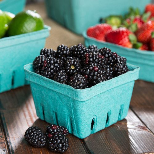 EcoChoice 1 Pint Green Molded Pulp Berry / Produce Basket - 25 / Pack