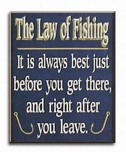 The law of fishing.  It is always best just before you get there, and right after you leave.