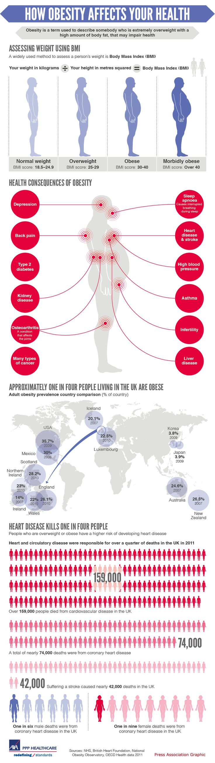 Infographic looking at the health risks of being obese, with a focus on the relationship of obesity and heart disease