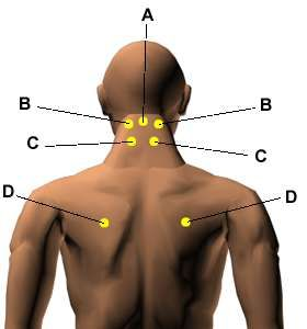 Acupressure Points for Relieving Insomnia.
