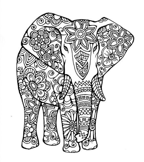 26 best Majestic Elephants images
