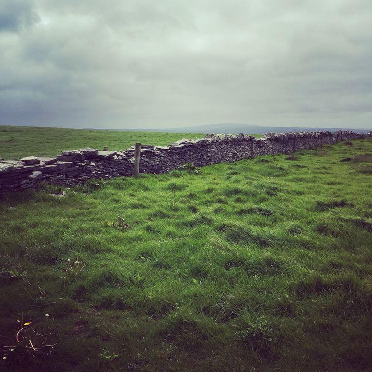 The green fields of Ireland