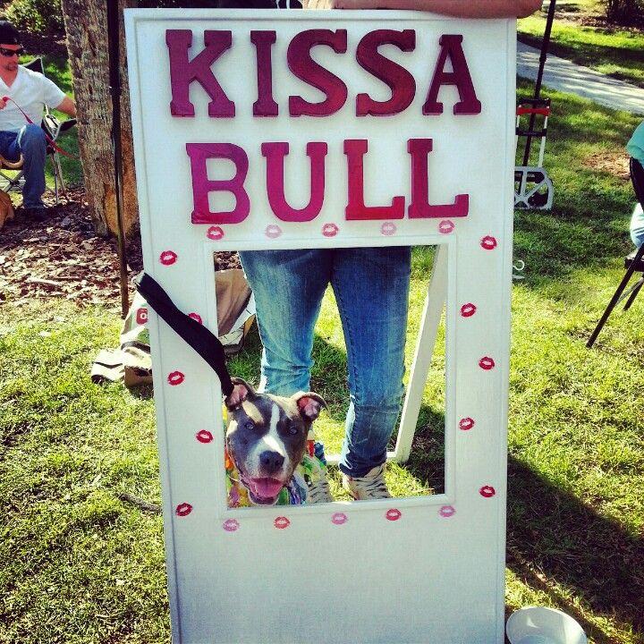 San Bernardino Nissan >> 1000+ images about Dog Kissing Booth on Pinterest ...