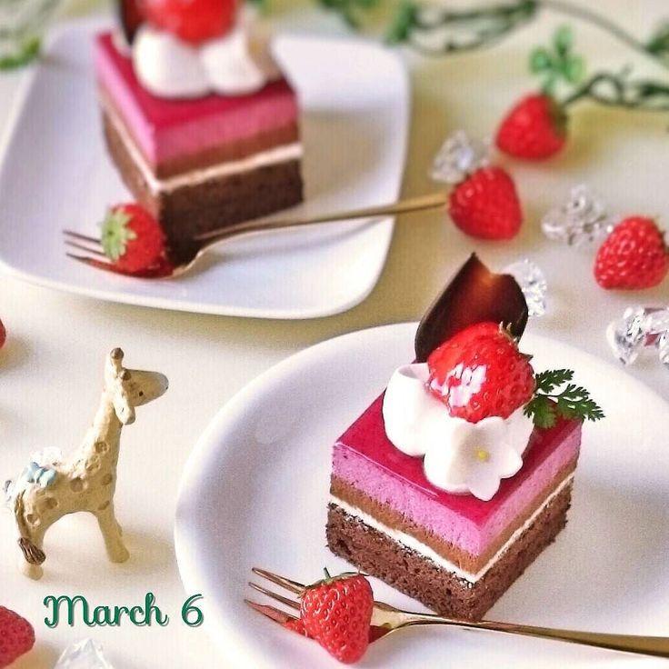 上から カシスムース チョコムース クレームシャンティ ガナッシュ アーモンドとココアのビスキュイ  #ムース #cassis #blackcurrant #mousse #チョコレートケーキ #chocolatecake #手作りケーキ #手作りお菓子 #ケーキ作り #お菓子作り #スイーツ #萌え断 #kaumo #kurashiru #instacake #homemadecake #instasweets #dessert #foodphoto #foodpic #foodie #케이크 #초코  日#黒すぐり 英#ブラックカラント 仏#カシス 同一人物 by michico.hi