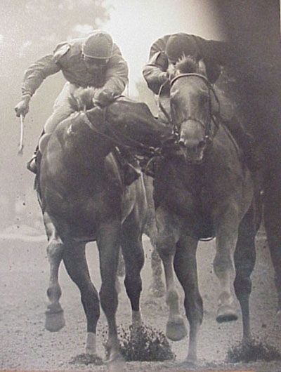 "One of the greatest Thoroughbred photos ever taken. And some say, ""Horses don't have personalities."""