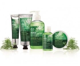 Purify and Revitalise Your Hands with The Body Shop's Absinthe Range