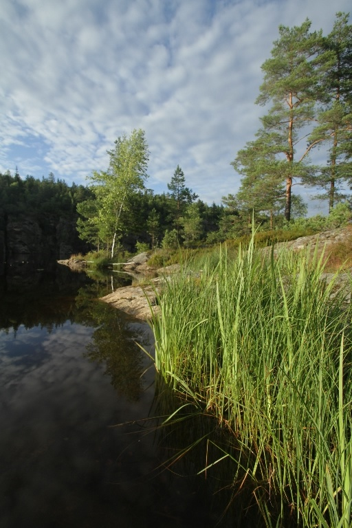 On a canoe trip in the idyllic water systems of Halden, Inner Østfold, Norway.