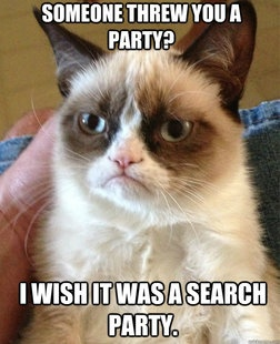 Grumpy Cat - Someone threw you a party?