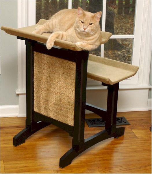 18 besten Products We Love Bilder auf Pinterest   Katzen, Katzen ...