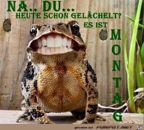 funpot: Montag.png von Luigi