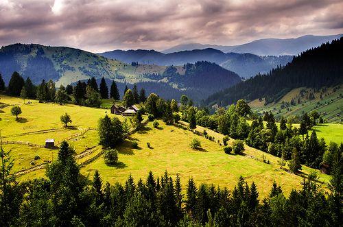 The hills of Bucovina