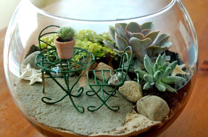 terrariums-decoratifs-6
