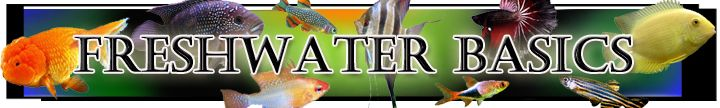Freshwater Aquarium Care | Basics & Fish Information | Maintenance  http://americanaquariumproducts.com/Basic_Aquarium_Principles.html