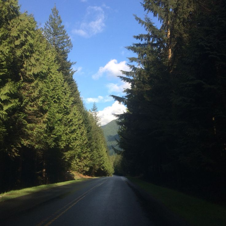 Golden Ears road inside the park