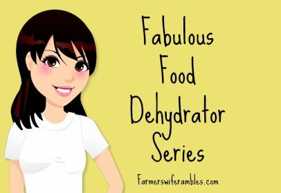 The Fabulous Food Dehydrator Series Part. 1: What is Food Dehydrator All About?