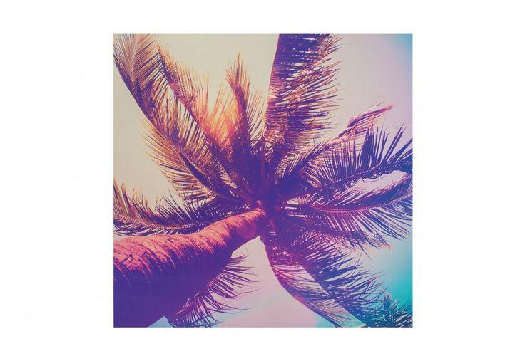 Technicolour Palm Canvas 75cm x 75cm | Super Amart