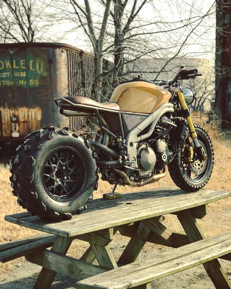 "26.7k Likes, 164 Comments - Cafe Racers of Instagram (@caferacersofinstagram) on Instagram: ""@classifiedmoto's Triumph Speed Triple 'Frank' on a picnic table. Caption this photo on their page…"""