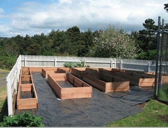 The Best Above Ground Garden Ideas On Pinterest Box Garden
