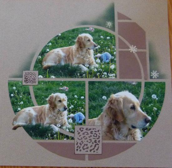 modele scrapbooking chien
