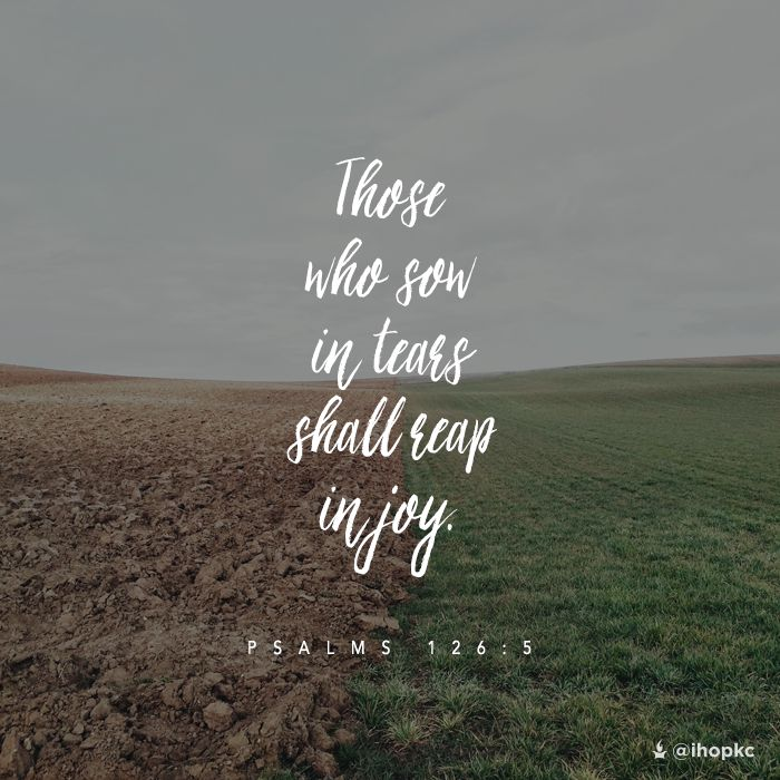 Fall Scripture Wallpaper Those Who Sow In Tears Shall Reap In Joy Psalms 126 5