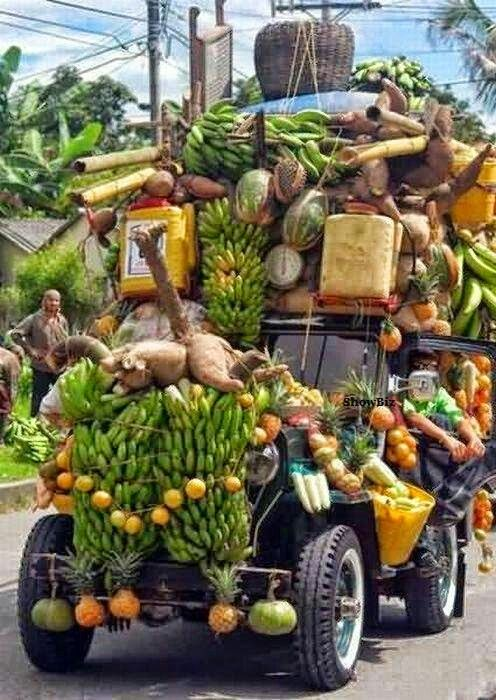 fahrbarer Gemüsegarten