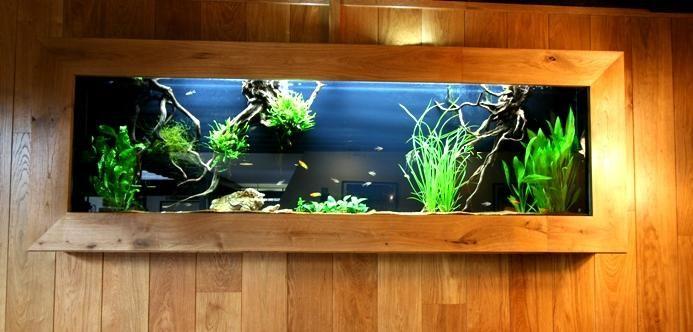 AQUARIUM EN MEUBELBOUW - Speciaalzaak voor aquarianen en vijver- liefhebbers, met advies en ondersteuning bij aankoop van vissen, planten en benodigdheden. Een van de grootse aquaria/vijvercentrums van europa