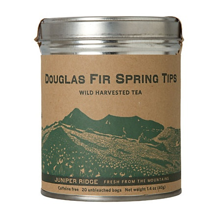 douglas fir spring tips tea