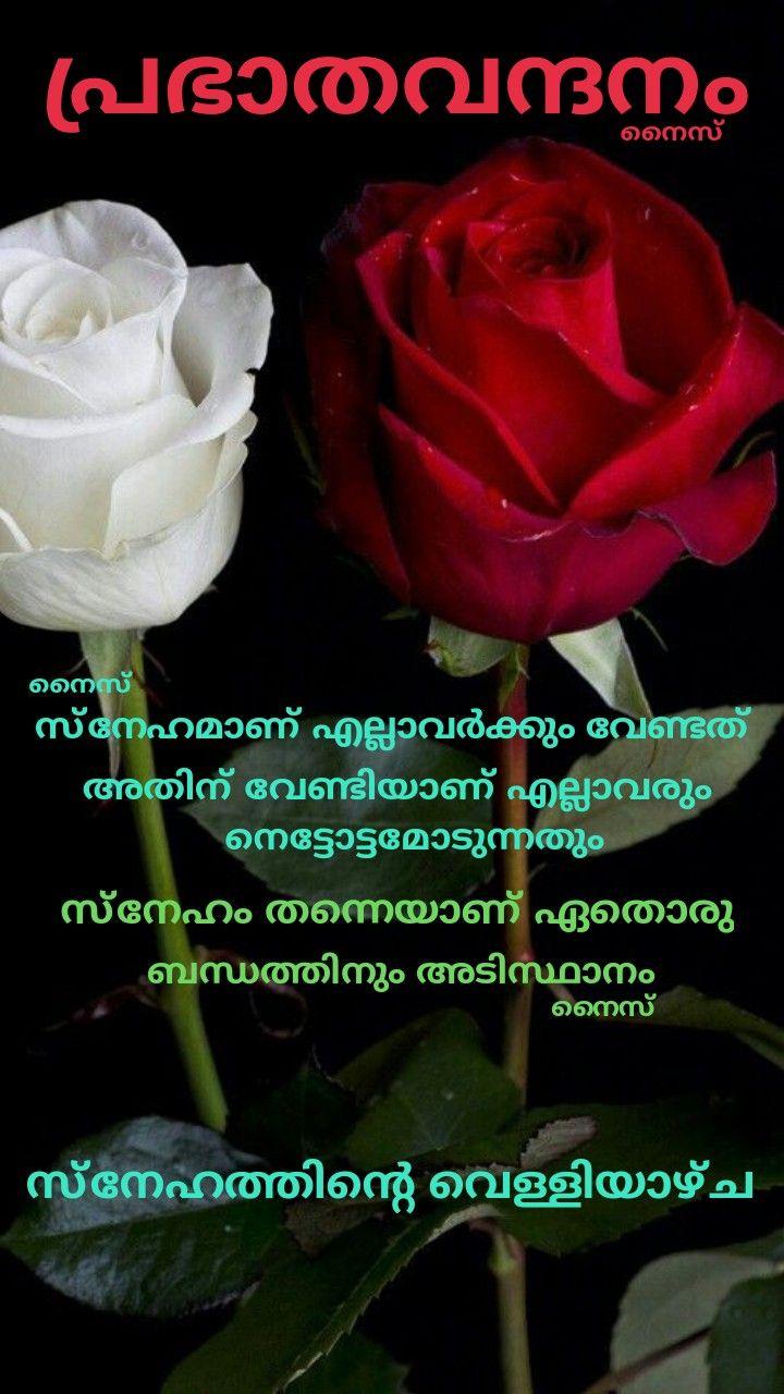Pin By Eron On Good Morning Friday Malayalam Friday Wishes Good Morning Friday Friday