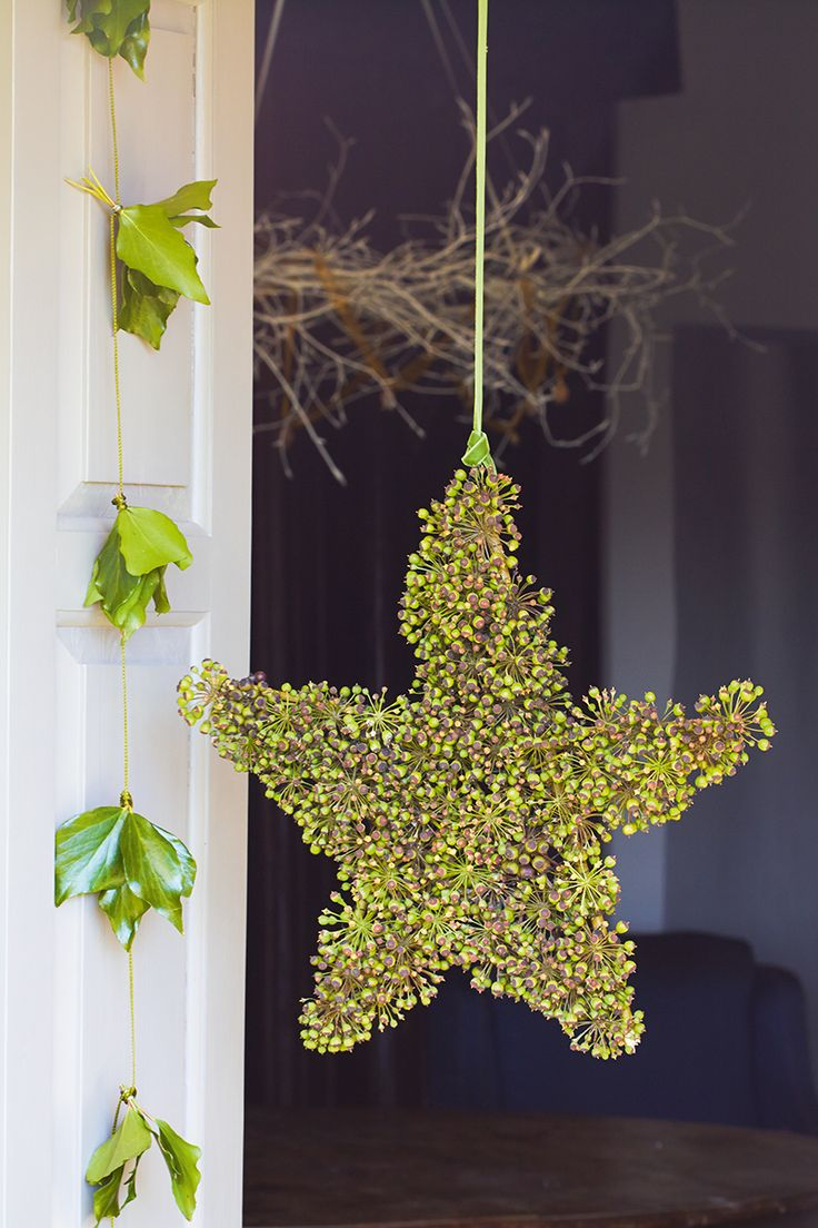 Ivy star and garland Photo by Britt Willoughby Dyer