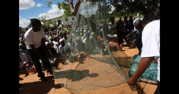 #Le taux de mortalité liée au paludisme a diminué de 2/3 en Afrique, selon l'ONU - StarAfrica.com: StarAfrica.com Le taux de mortalité liée…