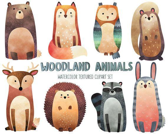 Watercolor Woodland Animals Clipart - Cute Animal Clip Art Set - Watercolor…