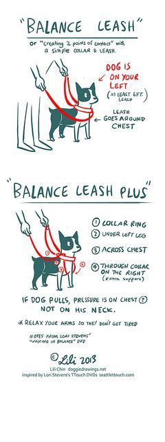 Boogie TTOUCH notes: BALANCE LEASH by lili.chin, via Flickr