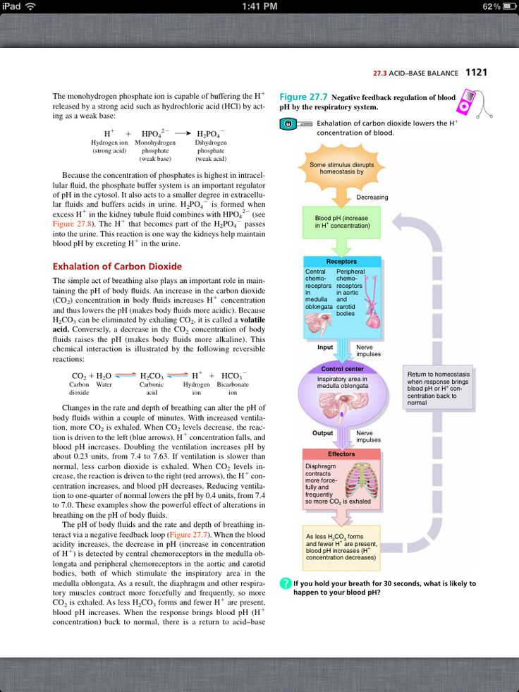 physiological principles Page 4 - experimental science, physiological psychology seeks to accomplish a reform in psychological investigation comparable with the revolution brought about in the natural sciences by the introduction of the experimental method.