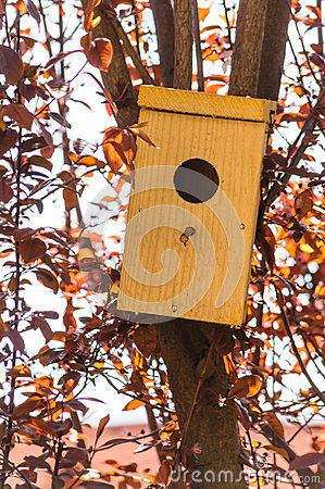 Bird House - Download From Over 25 Million High Quality Stock Photos, Images, Vectors. Sign up for FREE today. Image: 43158270