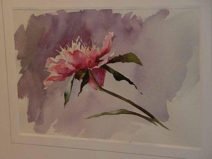 цветы акварелью пионы - Поиск в Google