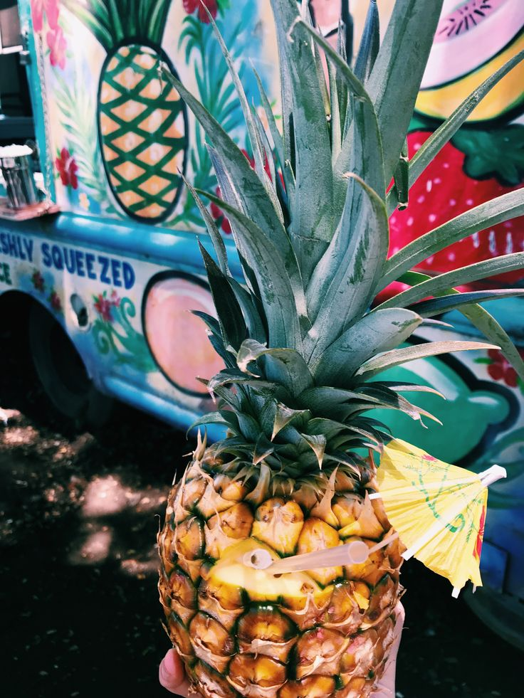 Pin by kendra jory on personal pins fruit pineapple food