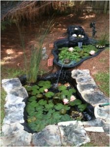 Ponds search and google search on pinterest for Tiered pond waterfall