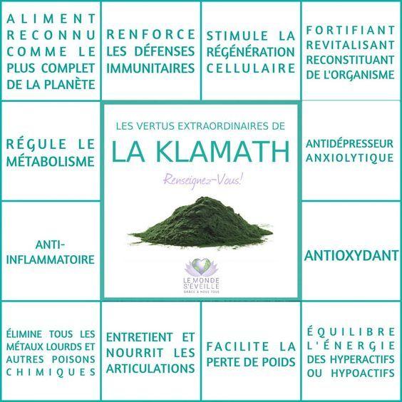 Les Bienfaits de la Klamath | LA KLAMATH Le Monde s'Eveille Grâce à Nous Tous ♥