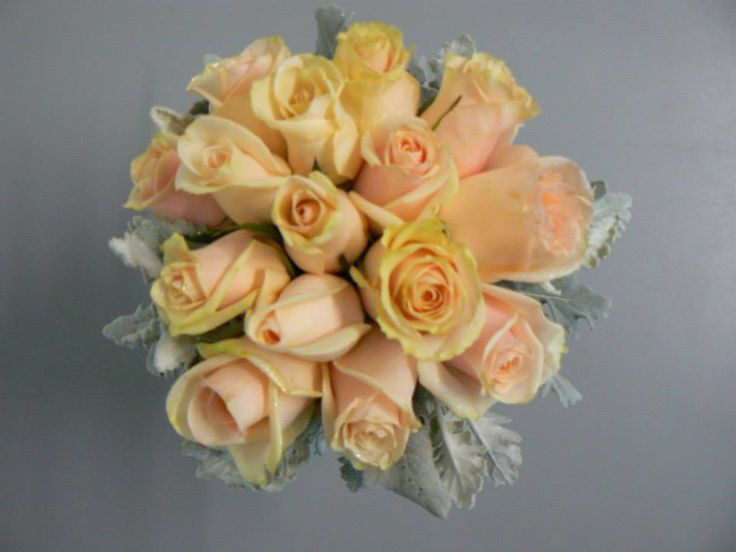 Beautiful apricot rose posy with complimenting dusty miller foliage