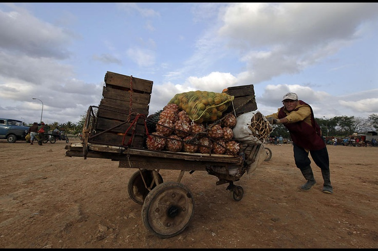 A man pushes his cart with vegetables and fruits at a private wholesale market in Havana March 26, 2013. Communist-run Cuba is gradually dismantling its monopoly on the purchase and sale of food in favor of private vendors, as part of efforts to reform the Soviet-style economy